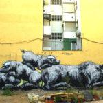 street_art_roa_7