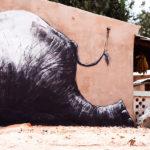 roa_street_art_gambia_3 Jonx Pillemer