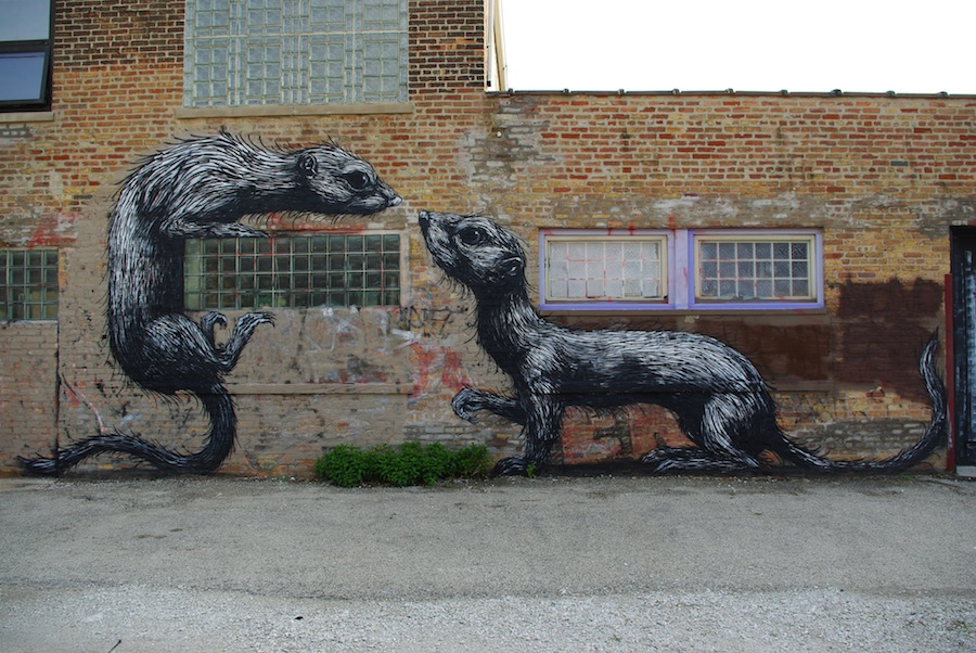 More info more by roa on street art utopia