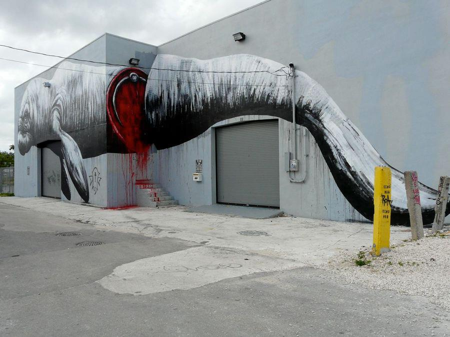 Street Art around the world_1_ROA_Miami