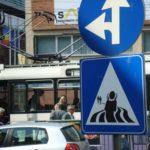 maj street_art_47_monotremu_timisoara_romania