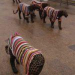 trutnov_street_art_guerrilla_crochet_6