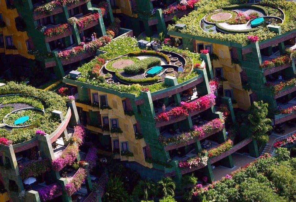Inspiration for your Guerilla Gardening! - In Phuket, Thailand