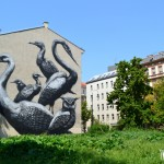 street art by roa fro inoperable in Vienna Austria