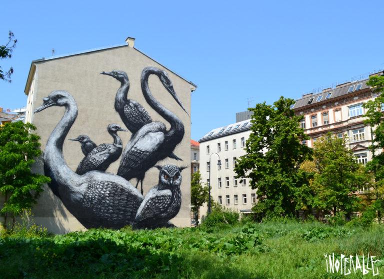 Street Art by Roa – In Vienna, Austria