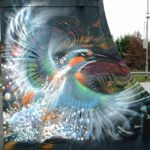 Bird by ~n4t4 – At Jubilee Skate Park, UK