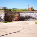 By ROA in Pilsen, Chicago, USA 2
