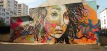 Street Art by c215 in Vitry-sur-Seine, France