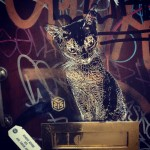 Street Art by C215 – In London, England