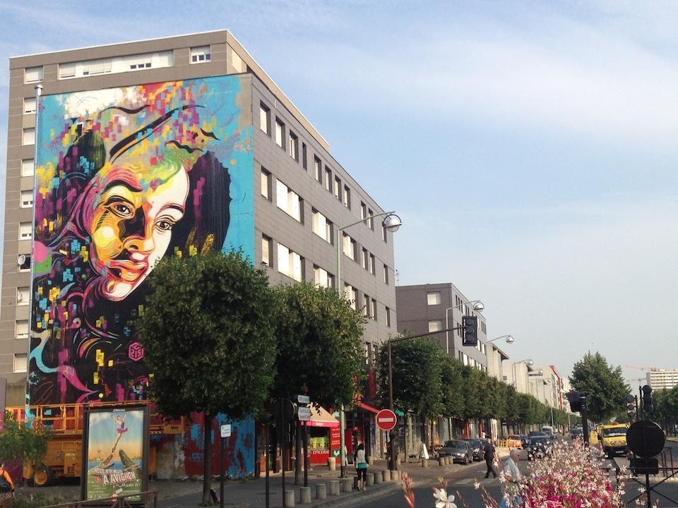 Street Art by c215 in Ivry, France 3