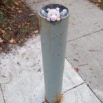 Chalk Art by David Zinn in Michigan, USA 5398