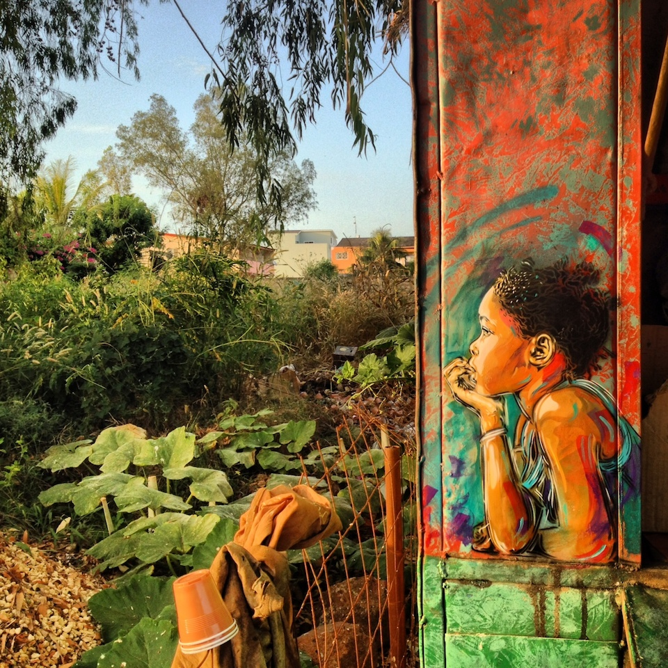 Street Art by C215 in Senegal 1