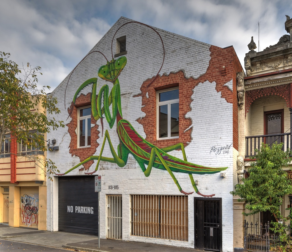Street Art by Buzzard in Fitzroy, Melbourne, Victoria Australia - Parying Mantis