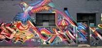 Bird of rainbow - Street Art in Melbourne, Australia