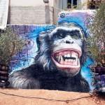 Street Art by Wild Dravings in Keramikos, Athens, Greece 1