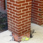 By David Zinn in Michigan USA 4468587