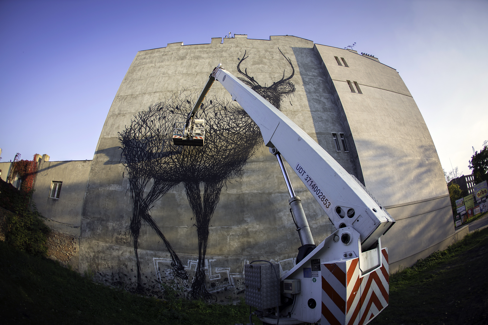 Street Art by DALEAST in Lodz, Poland in for Galeria Urban Forms project 6