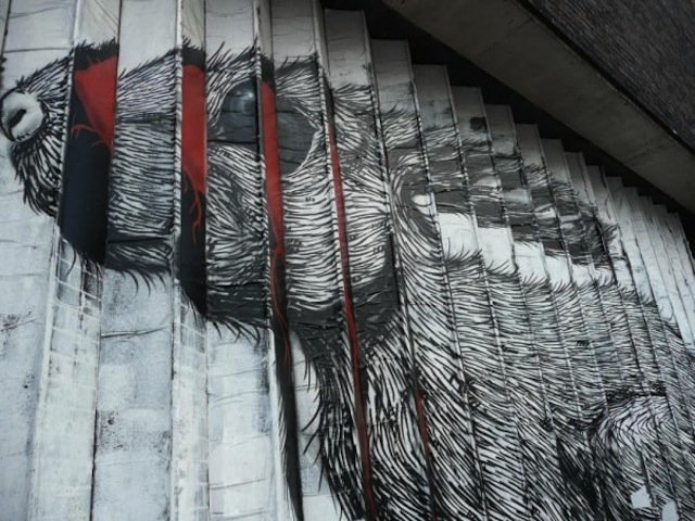 ROA - A Street Art Collection