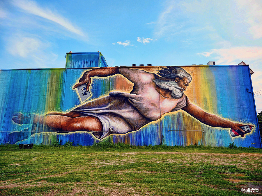 Preservons La Creation - Street Art by Sebastien Mr. D Boileau in San Jacinto Street, Houston, Texas
