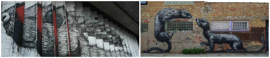 ROA Collage
