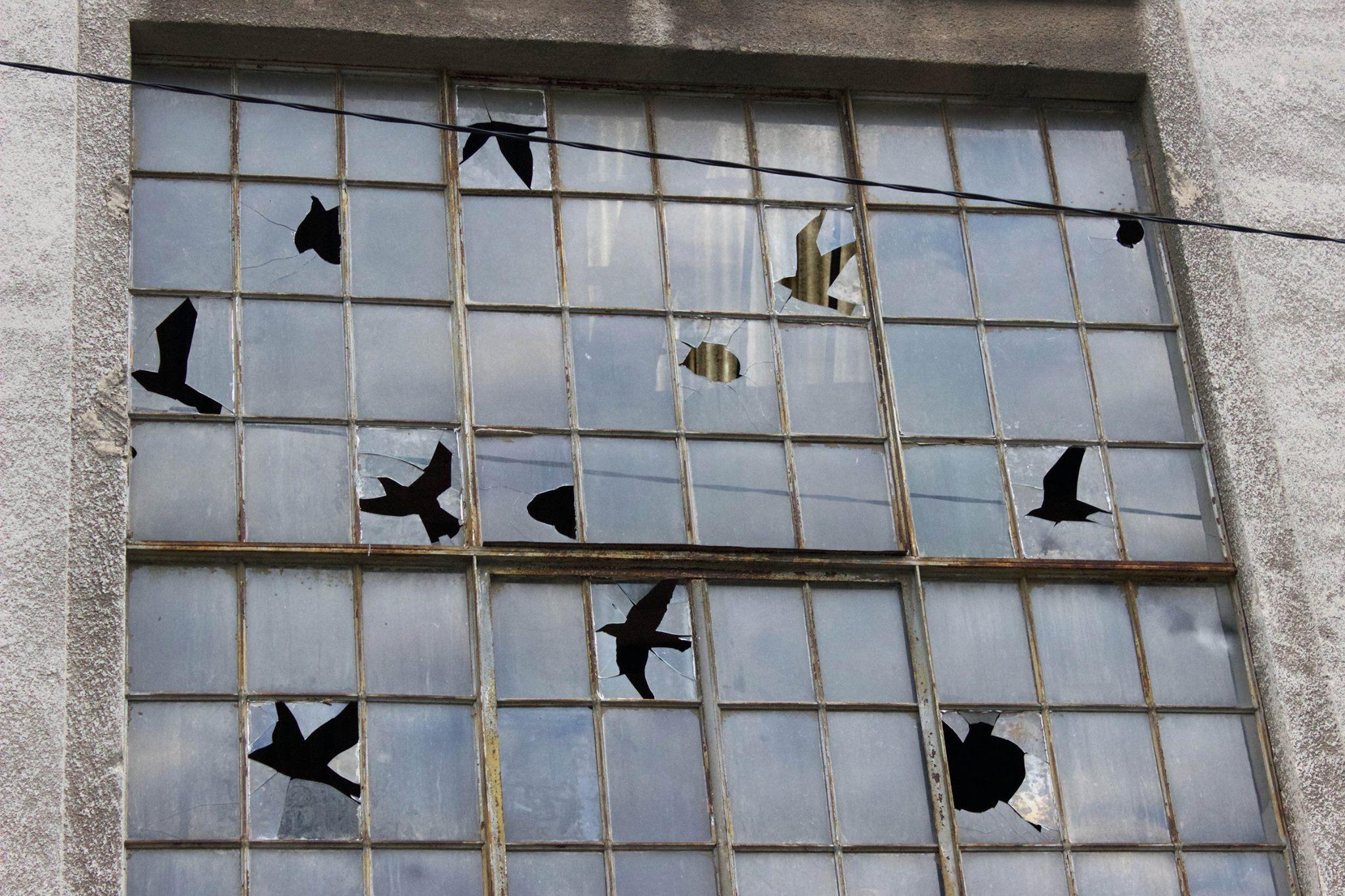 Street Art by Pejac in Croatia, Rijeka - 'Camouflage' Tribute to René Magritte 1