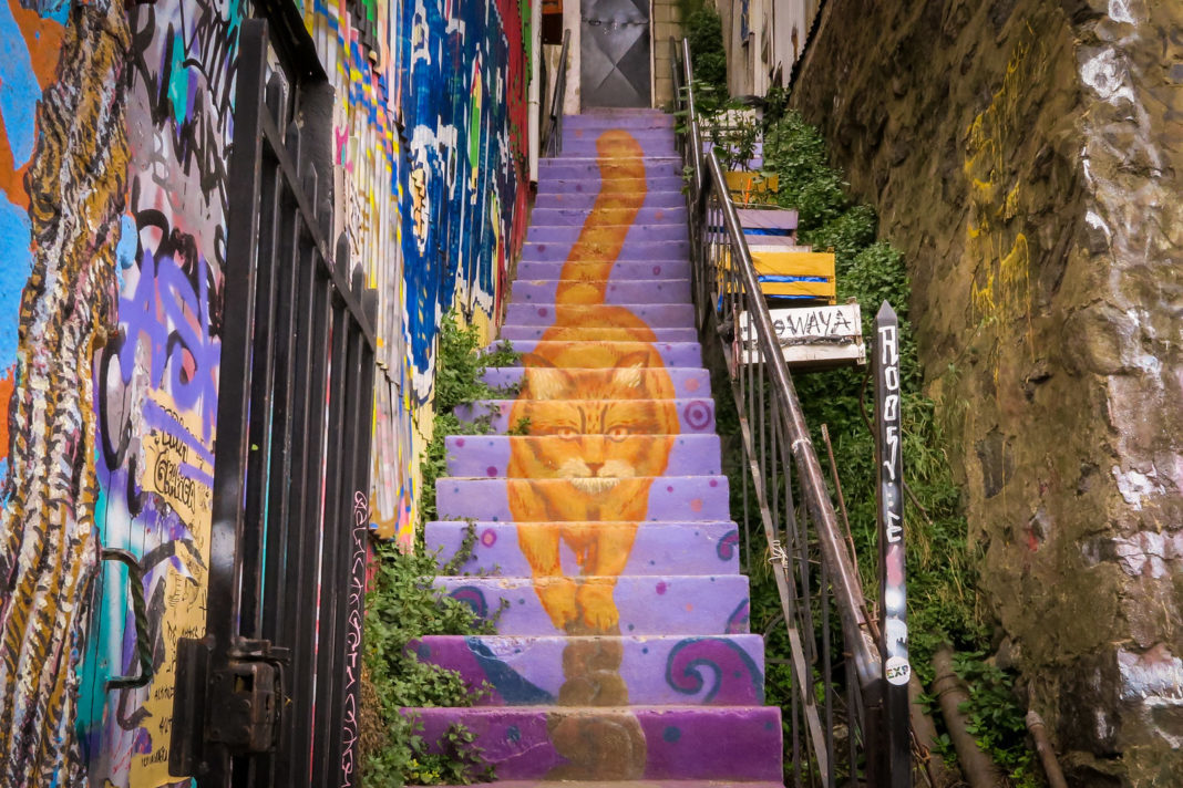 #StreetArt #Stair #cat in #Valparaiso, #Chile