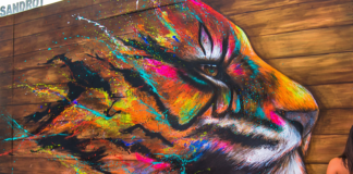 #streetart #tiger by #Sandrot at Underground Effect 4. In La Défense, #Paris, #France