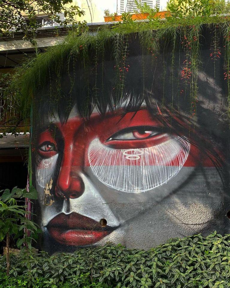 Nature taking over – In São Paulo, Brazil